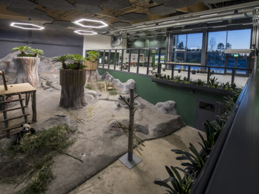 Ähtäri Zoo Panda habitat